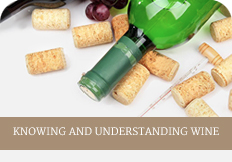 Knowing and understanding wine