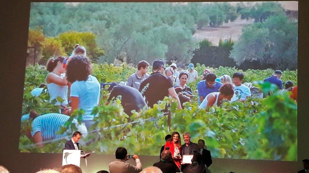 """Francisco Robles recoge el premio de Enoturismo """"Rutas del Vino de España"""""""