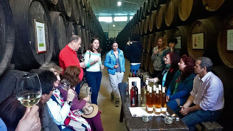 Isabel Calvache y Mara de Miguel guían la conversación sobre los vinos.